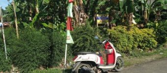 Dijual Tanah Kosong di Cilacap - Jawa Tengah